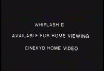 whip2hv.JPG